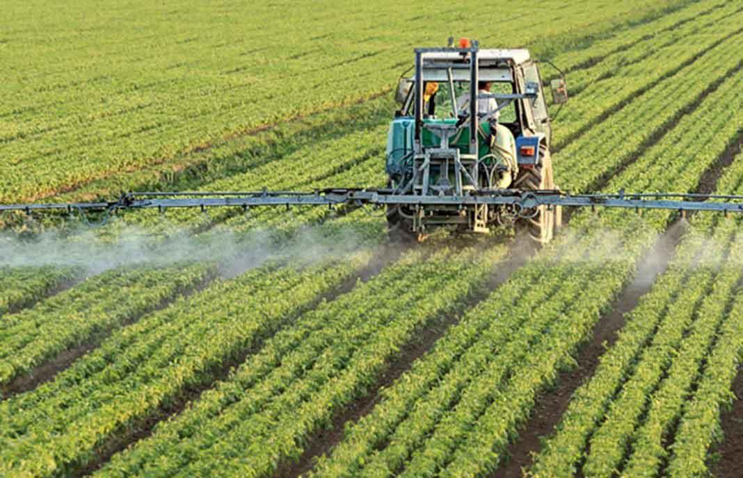 Nuevas Aplicaciones De DIOXPURE En Agricultura